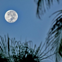 view of full moon over san pedro